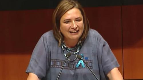 Llama Senado a comparecer a Rocío Nahle sobre CELs