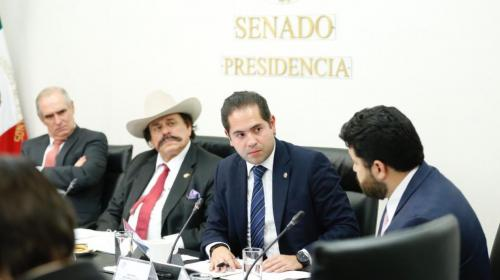 Avala Comisión de Energía del Senado terna para la CNH