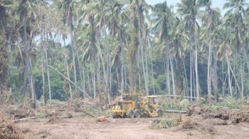 Pemex alojará a la Sener, limpió terrenos en Tabasco, dicen