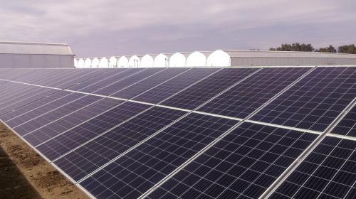 Energía solar, vanguardia de la transición energética soberana: Asolmex