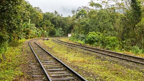 Electrificarán CFE y Fonatur tramo del Tren Maya