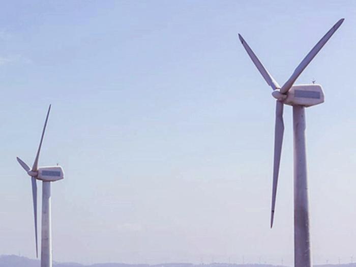Otorgan amparo extensivo a todas las renovables que interpusieron recurso