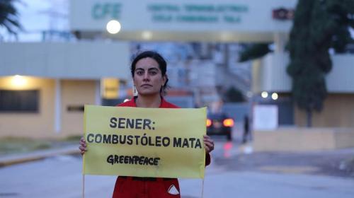 Celebra Greenpeace desbloqueo de juez a renovables