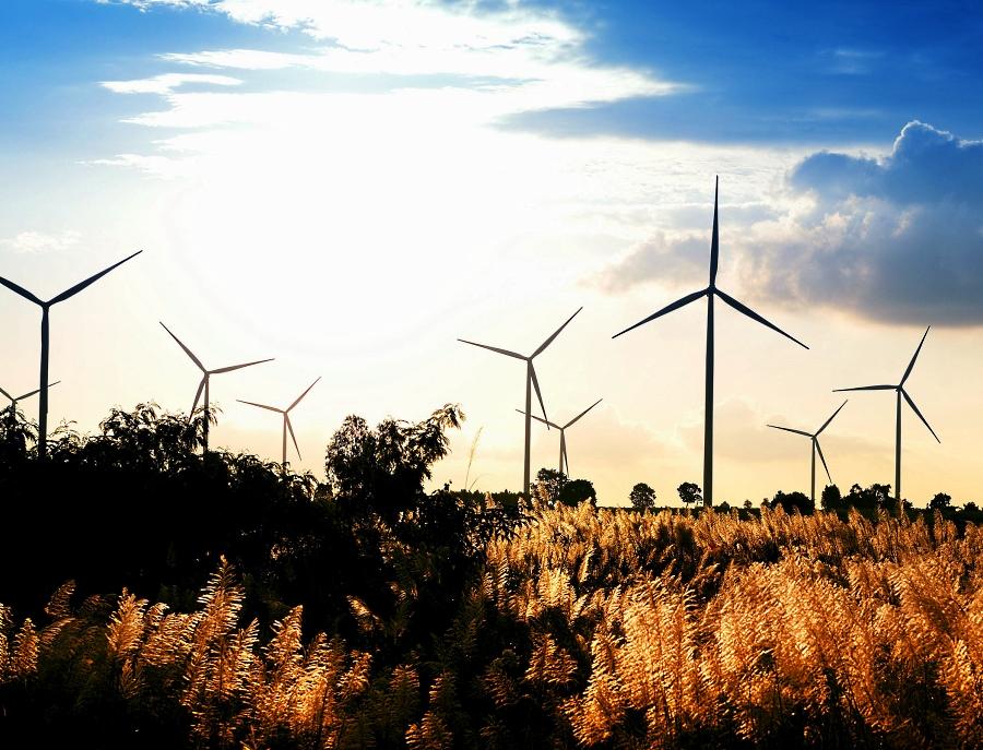 Coloca Banobras bonos sustentables; financiará renovables