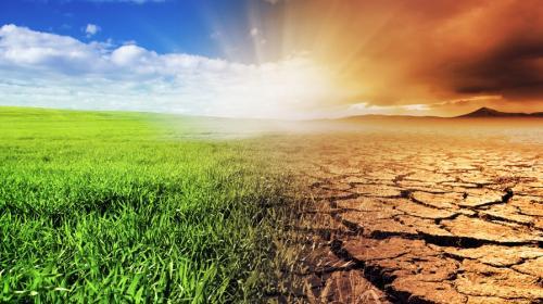 Lamentan falta de interés del gobierno en la agenda climática