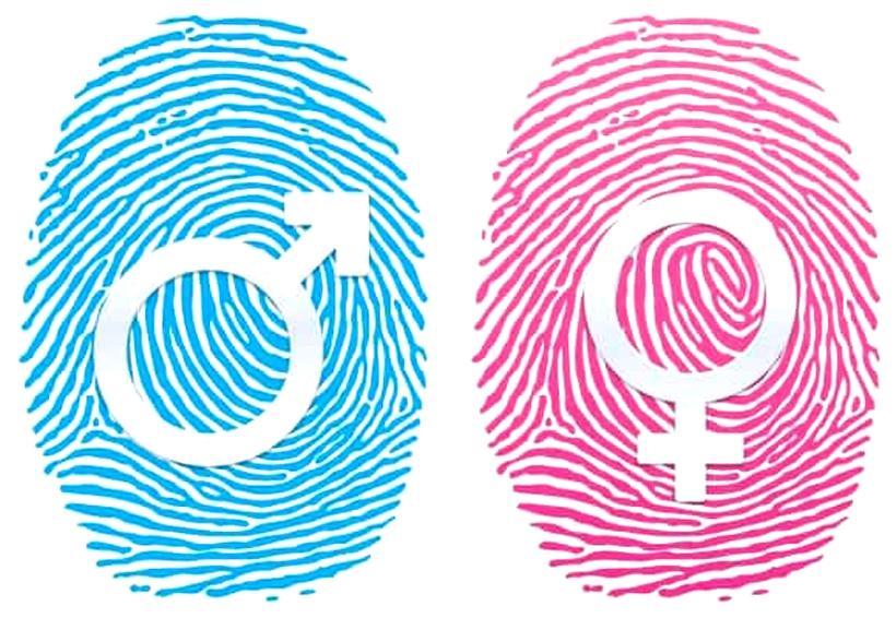 Enel repite en el índice de igualdad de género de Bloomberg