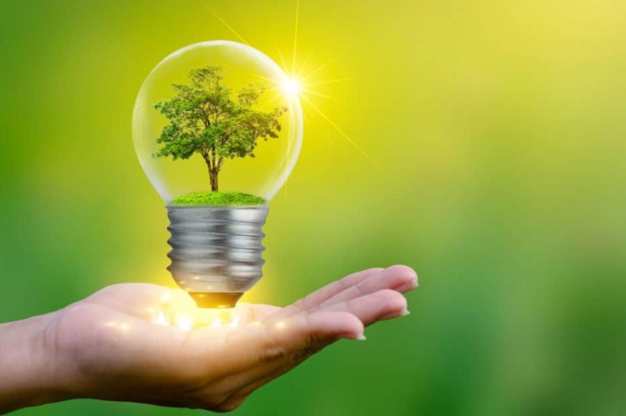 Viola ley eléctrica derecho humano al medio ambiente sano