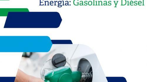 Competencia pareja en mercados de gasolinas, pide Cofece