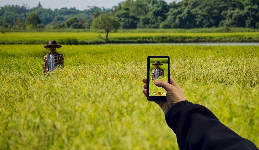 Llevará CFE telefonía celular a zonas rurales