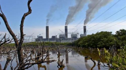 Dañaría al ambiente la propuesta oficial de ley eléctrica