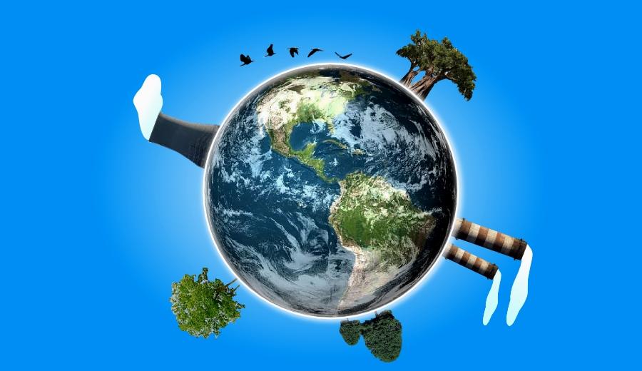 Ya no más inversiones en combustibles fósiles: AIE