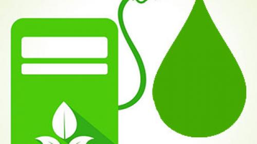 Autosuficiencia energética: el impulso al bioetanol