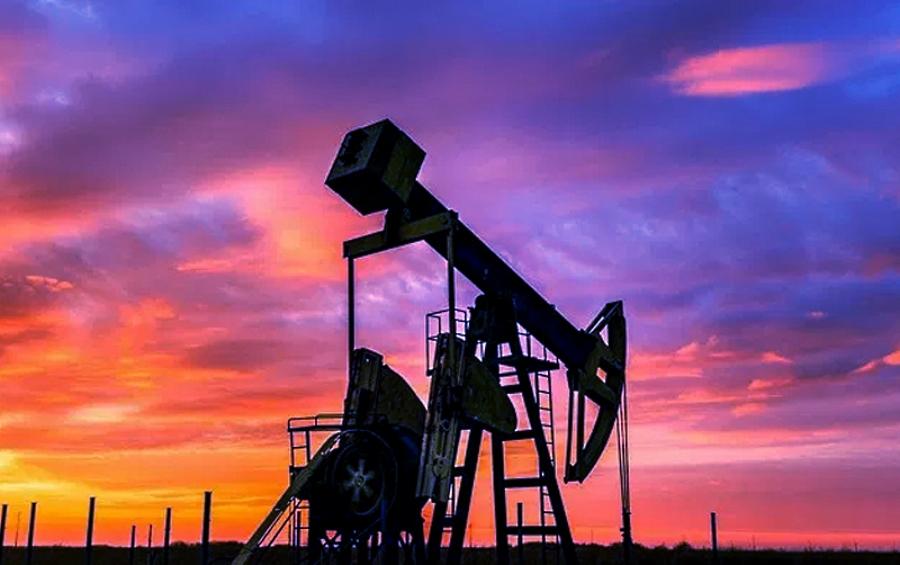 Buscan 11 empresas participar en licitación de 7 bloques petroleros